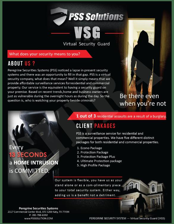 Vsg Security Careers