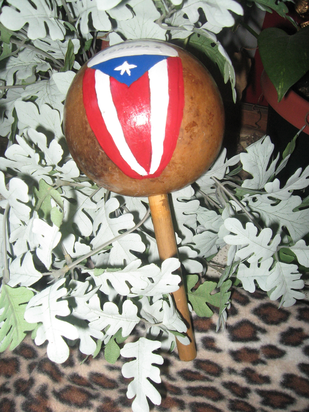 Puerto Rico Traditional Instrument