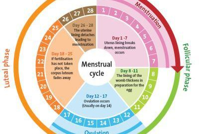 counting menstrual days - 628×275