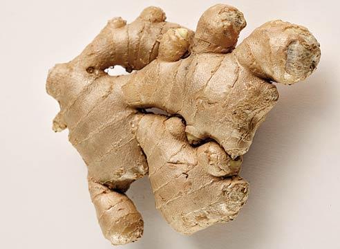 Useful ginger