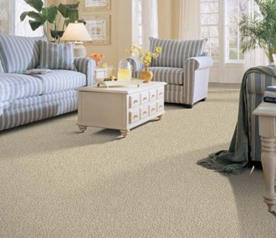 Carpet Carpeting Stain Free Wear Free Worry Free Carpeting | Low Pile Carpet For Stairs | Wool | Carpet Wrapped | Hallway | Bedroom | High End