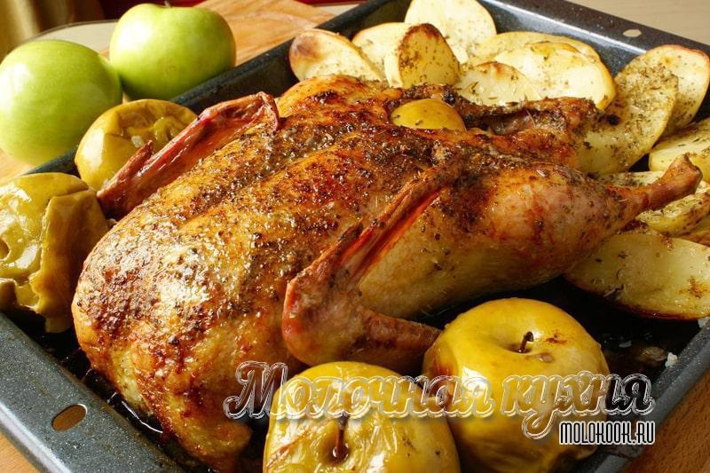 Recept gås bakad i en ugn med äpplen