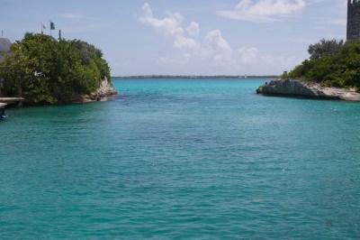 Blue Lagoon Island Bahamas Dolphin Encounter