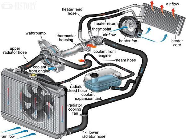 2003 Ford Focus Parts Diagram