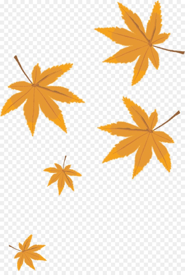 fall leaves png # 7