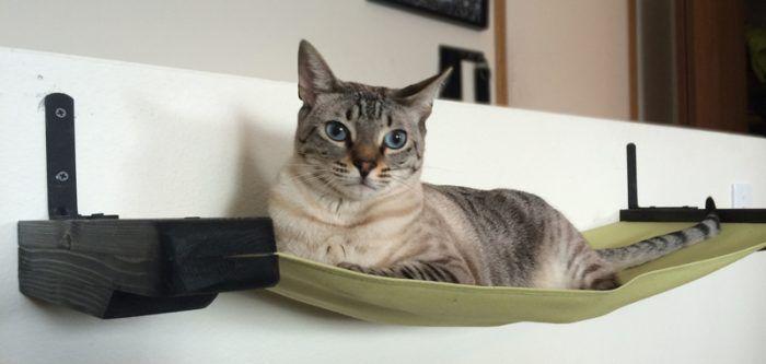 Hammock para gato