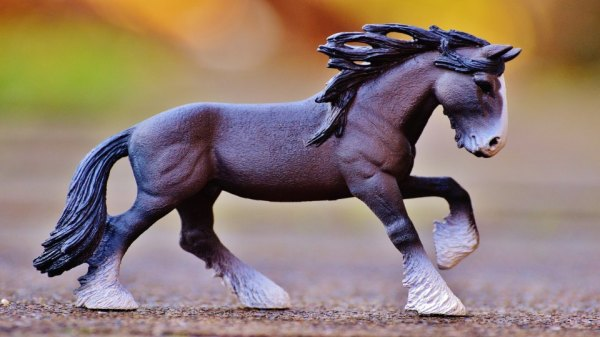 realistic horse breeds # 35