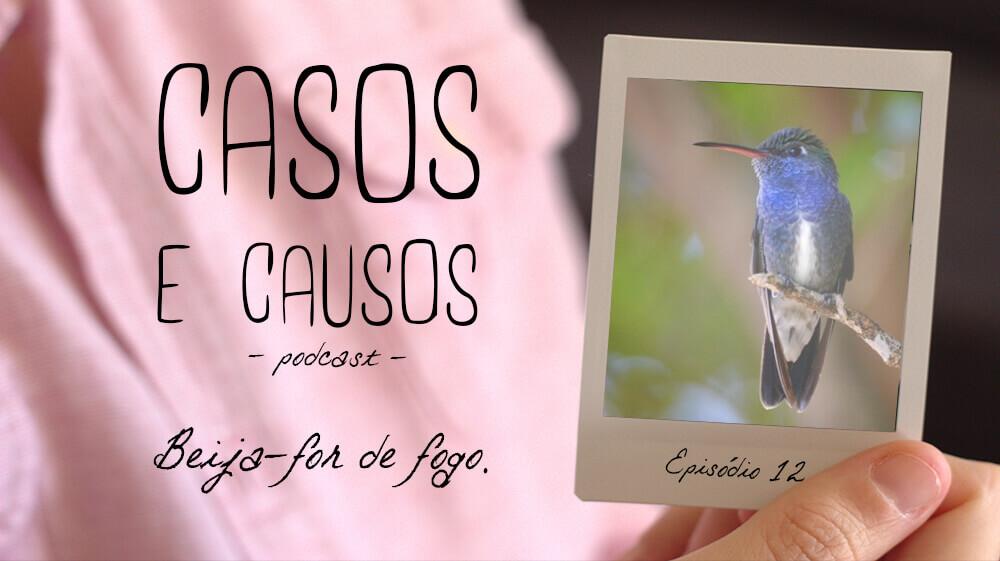 Casos e Causos #12 – Beija-flor de  fogo