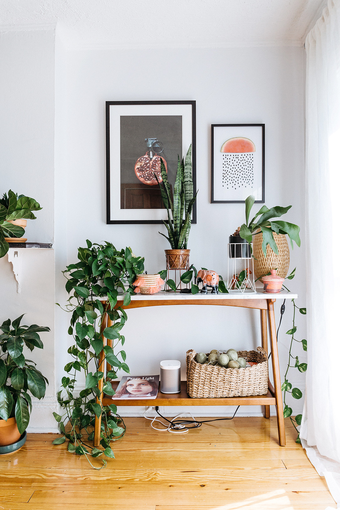Wall Plants Indoor
