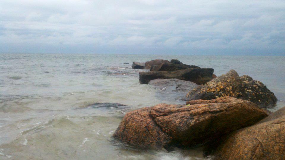 Cape Cod Bay Fishing Report