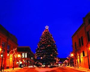 Traverse City Christmas Tree Lighting Mynorth Com