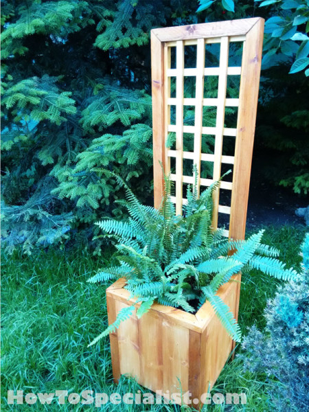 Small Outdoor Planters