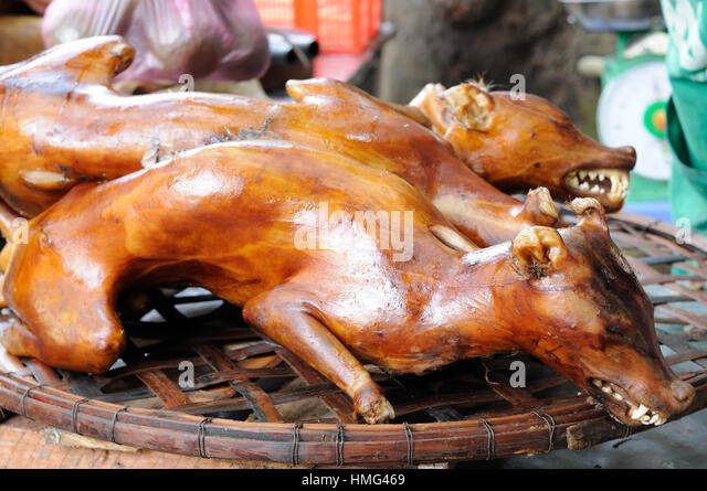 Chinese Eating Dog Meat