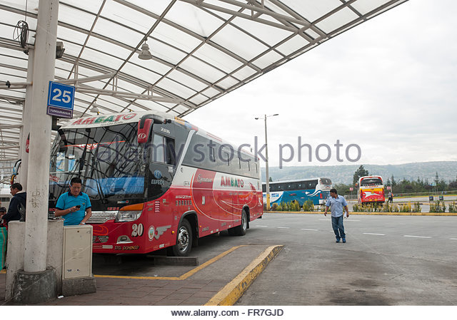 Greyhound Departure And Arrivals
