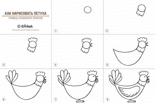 Sådan tegner du en hane