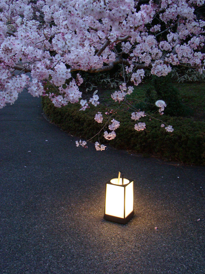 Lighting Up The Japanese Garden At Night North American