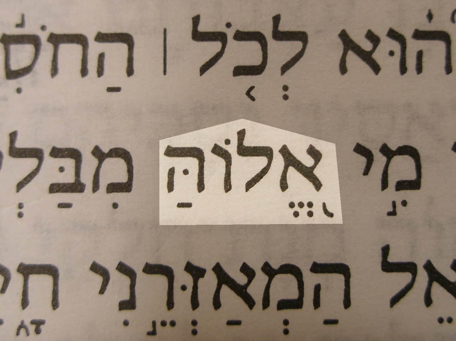 Book Elah