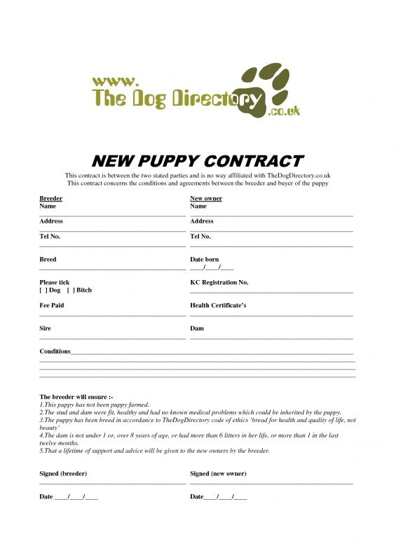 puppy sales receipt pdf