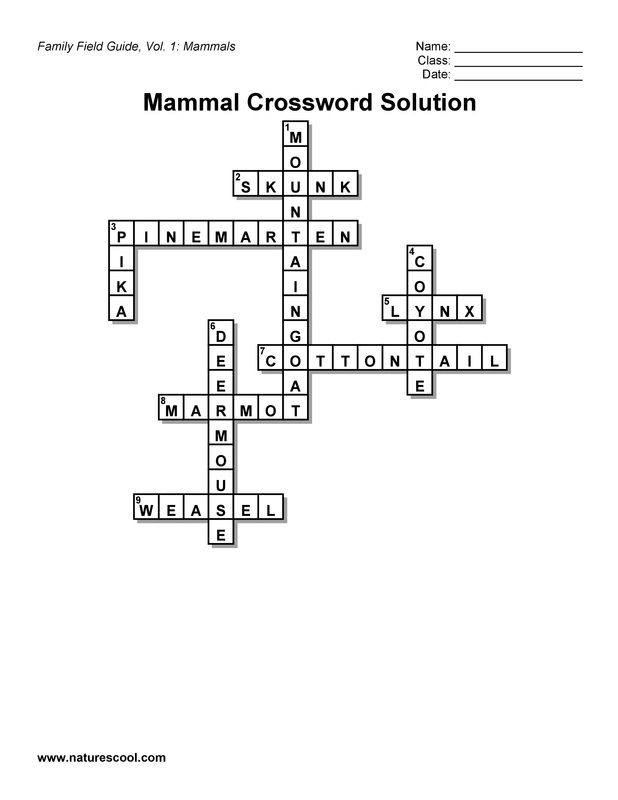 Food Word Search Puzzles Full Page