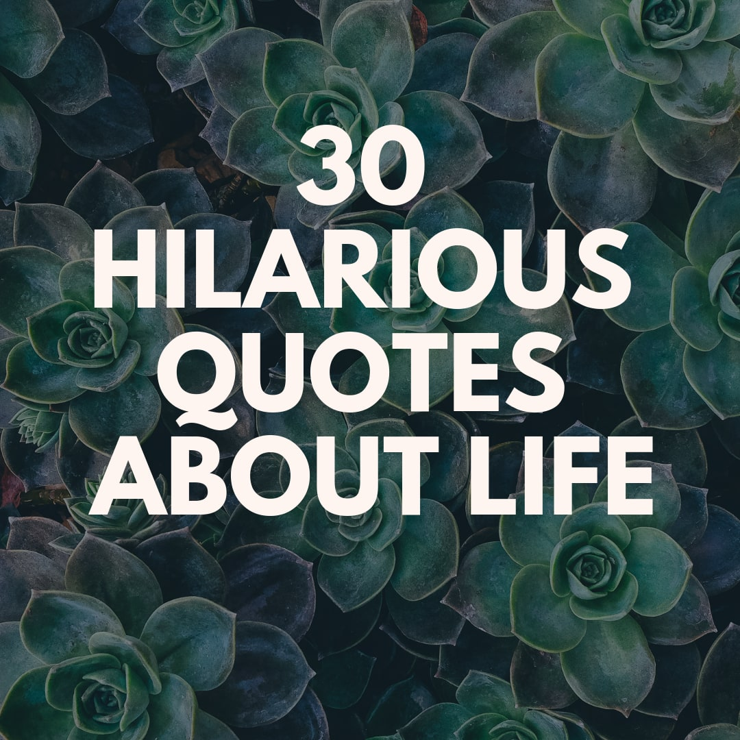 30 hilarious quotes about life in general Tuko.co.ke