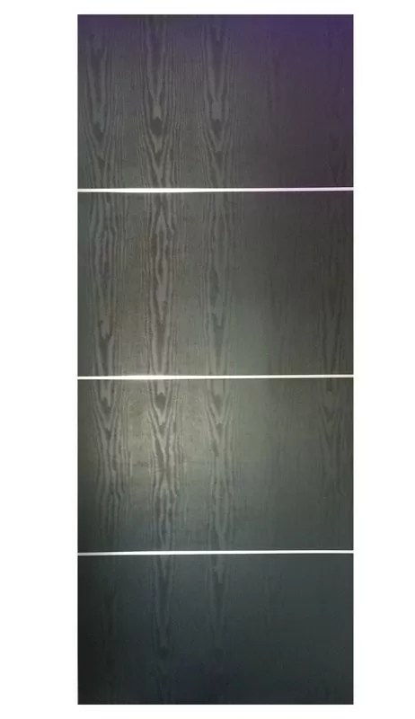 Modern Interior Door HG-008 BLACK ASH