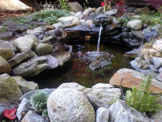 Rocks Where Pond Buy