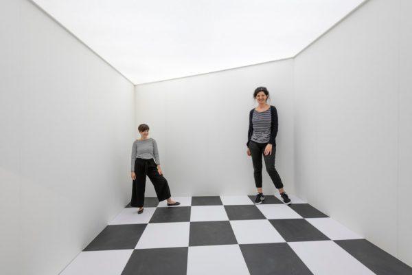optical illusions school presentation # 34