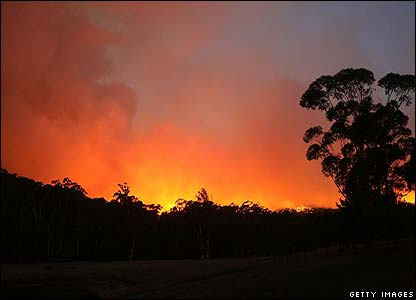 Cbbc Newsround Pictures In Pictures Australia Forest Fires 2009