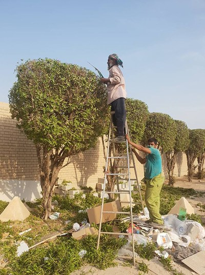 The men who keep Kuwait's streets clean and shrubs neat ...