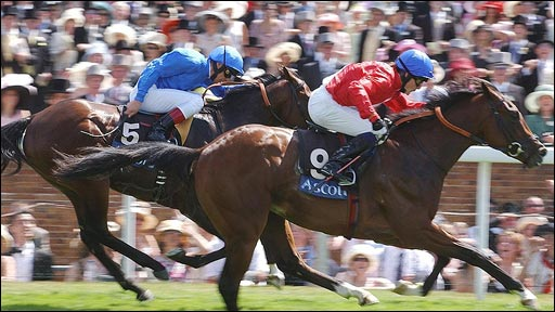 Bbc Sport Other Sport Horse Racing Live Video