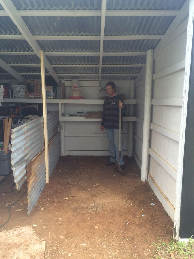 How We Turned A Shed Into A Chicken Coop