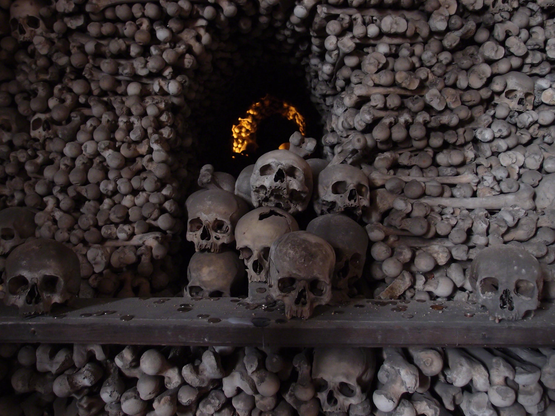 pile of bones - HD2648×1986