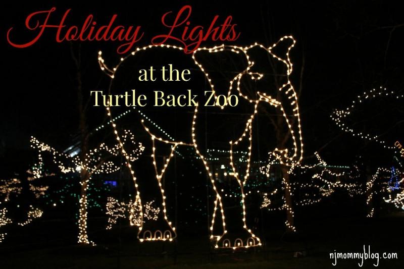 Zoo Lights Admission