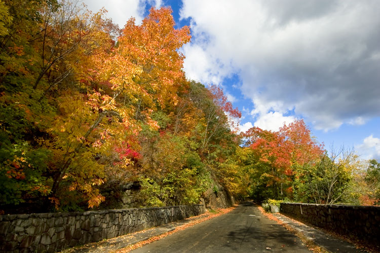 Henry Hudson Drive Palisades Interstate Park In New Jersey