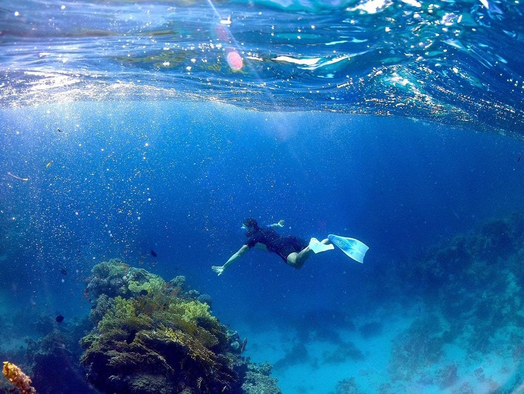 Il mare a Sharm El Sheikh - immersioni