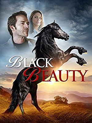 Black Beauty – Magnetlank