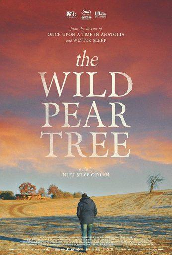 The Wild Pear Tree