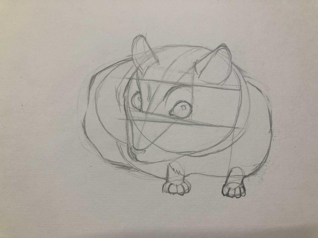 Comment dessiner un hamster au crayon - Dzhungarian 2 scène - photo