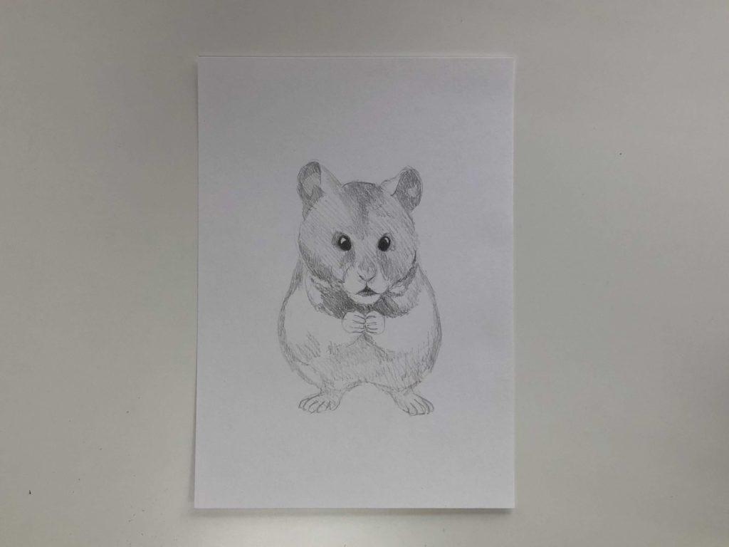 Comment dessiner un hamster crayon - un simple hamster 2 scène - photo