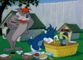 Tom And Jerry Episode Pup On A Picnic