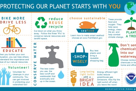 Protect the Earth Infographic showing ten things you can do to protect the earth