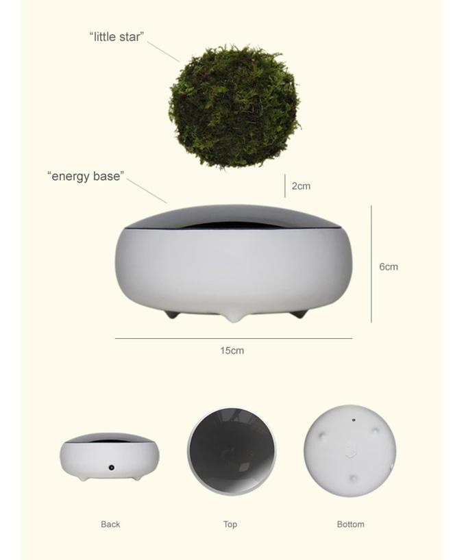 Floating Bonsai Tree Amazon