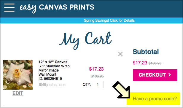 Easy Canvas Prints Reviews: Shipping Info + See My Canvas ...