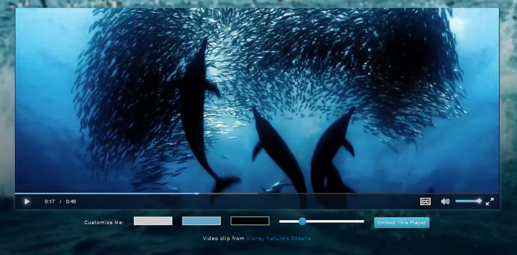 Open Source HTML5 Video Player