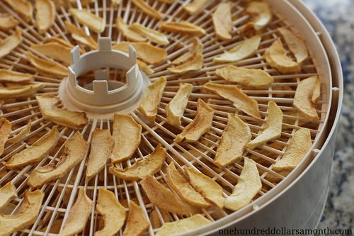 How To Dehydrate Apples With A Food Dehydrator One