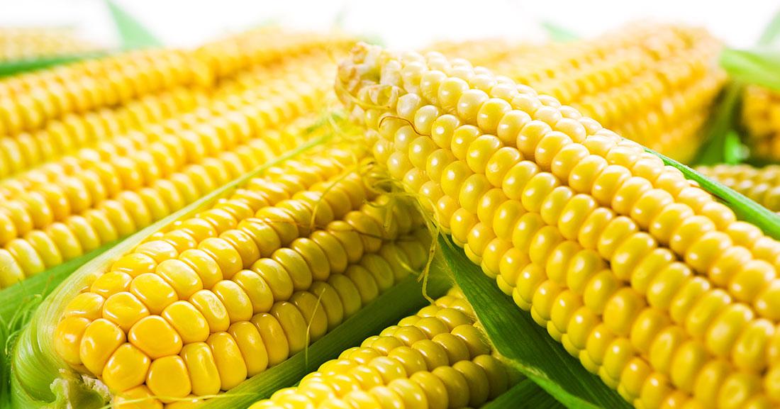 Fresh Farms Niles Address