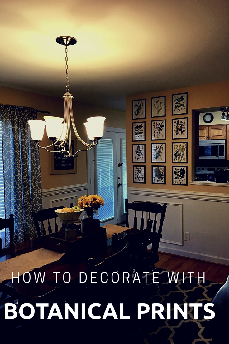 Decorating tips and tricks  decorating with botanical prints  a     Decorating tips and tricks  decorating with botanical prints  a Pinterest  roundup