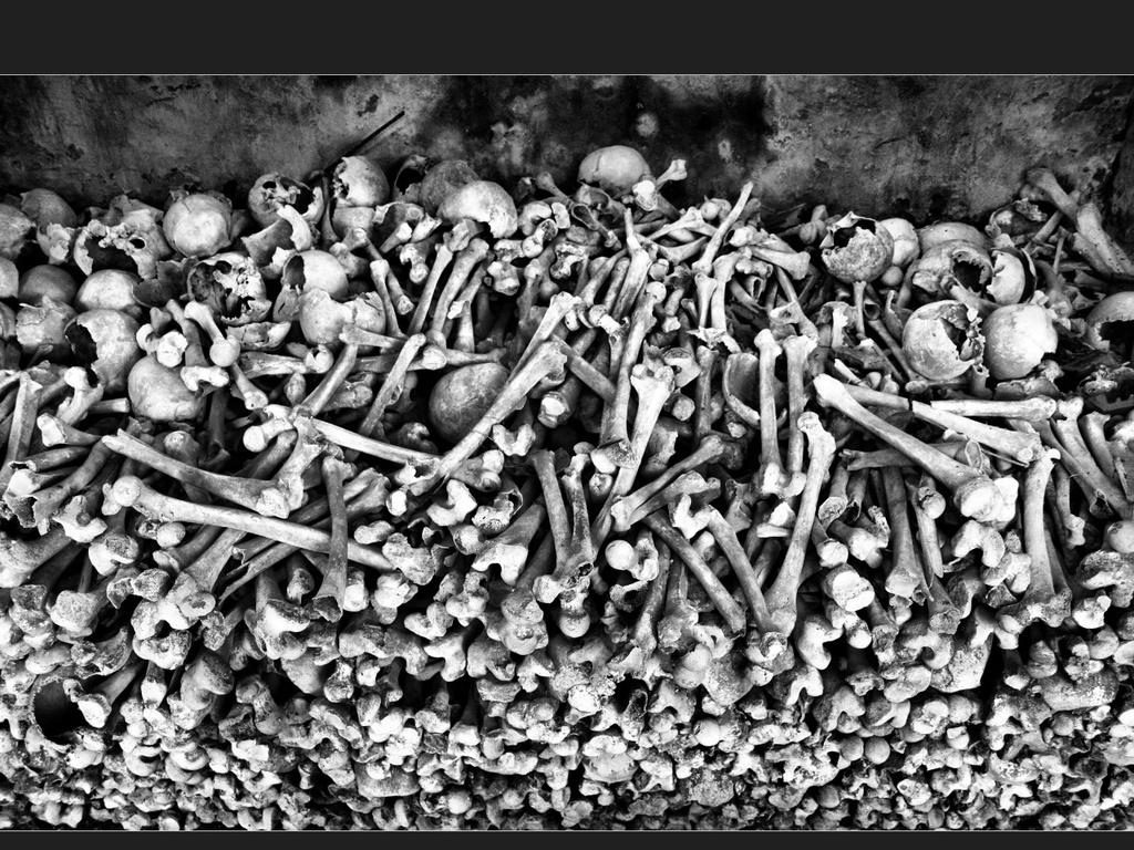 pile of bones - HD1024×768