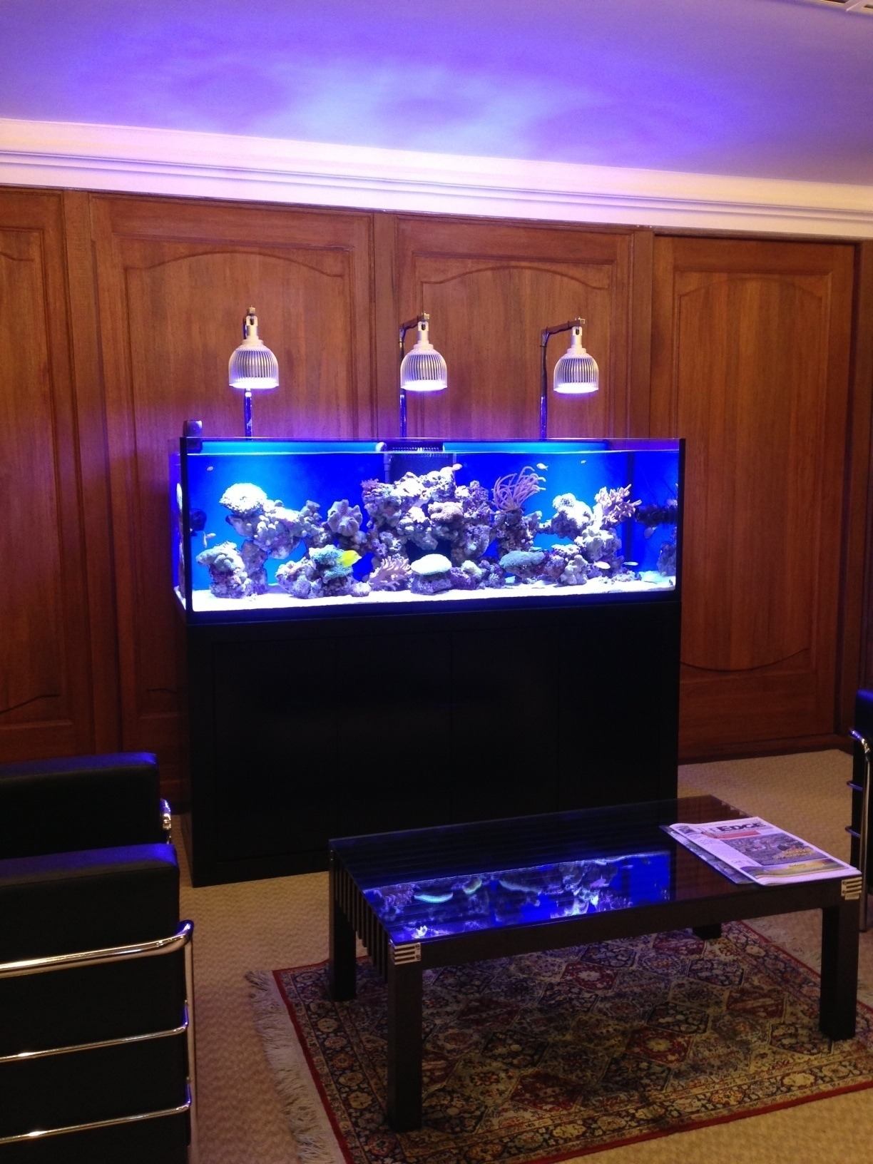 Led Vs Metal Halide Orphek Aquarium Led Lighting