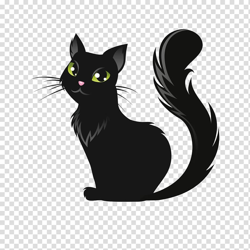 cat clipart transparent background - 800×800